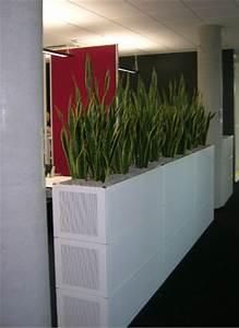 Pflanzen Als Raumteiler : b rom bel mit hydrokulturpflanzen ~ Sanjose-hotels-ca.com Haus und Dekorationen