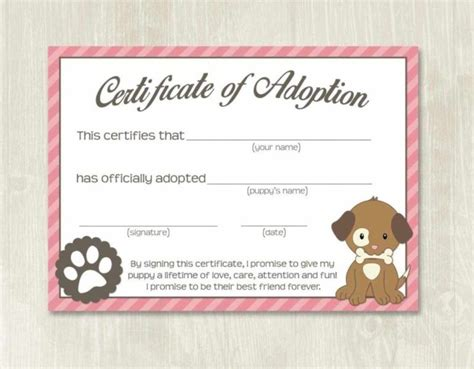 pet adoption certificate template fake adoption papers