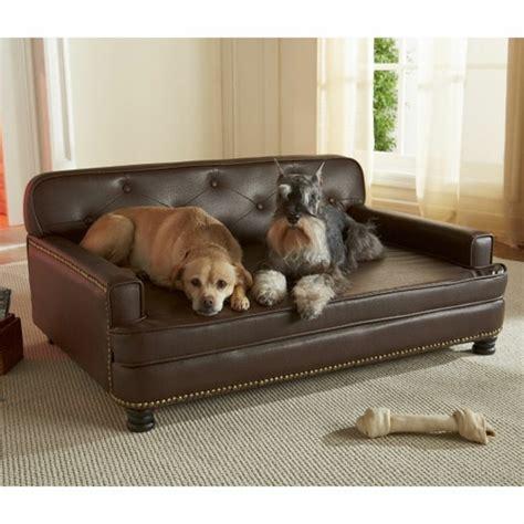 canapé pour petit chien pas cher canape pour petit chien pas cher 28 images canape pour