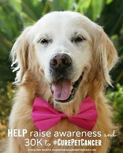 HELP Raise Awareness Nationwide is on a Mission to # ...