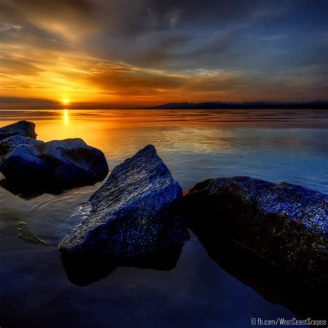 ivan gouron photographs  beautiful world mayhem