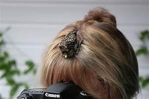 Kleine Fliegen In Blumen : hurra ich kann fliegen aber ich kann foto bild tiere ~ Lizthompson.info Haus und Dekorationen