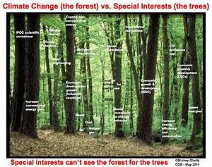 Global Warming: Stakeholders can't see the forest for the ...