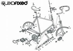 Fixed Gear Anatomy
