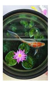 3D Goldfish Painting On Resin Layers | Resin art painting ...