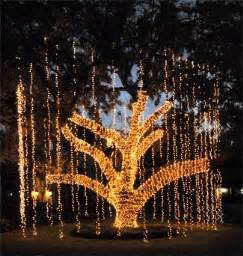 1000 ideas about lighted trees on pinterest wedding thank you cards festival decorations and