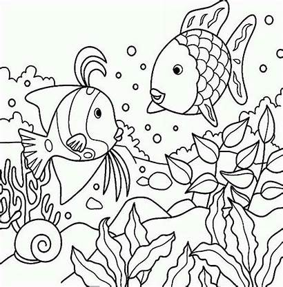 Coloring Sea Animals Fish Rainbow Pages Creatures