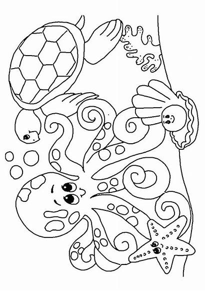 Coloring Sea Pages Animals Winter Colouring Under