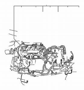 Toyota Corolla Wire  Transmission  Wiring  Electrical