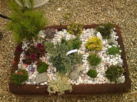 small rockery grows on you