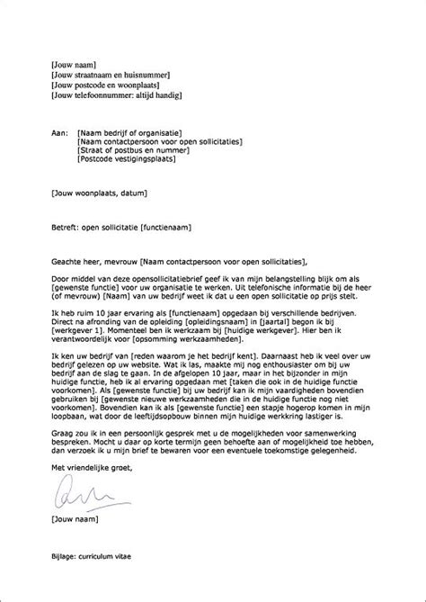 Curriculum Vitae Elevator Pitch by 25 Unieke Idee 235 N Cv Sjablonen Op Cv Cv