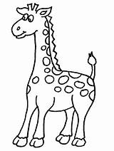 Giraffe Coloring Pages Printable Giraffes Printables sketch template