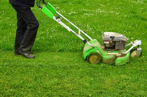 Tips For Mowing A Wet Lawn