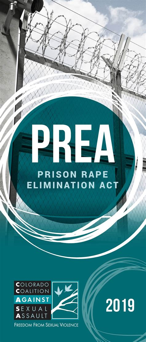 prea colorado coalition  sexual assault