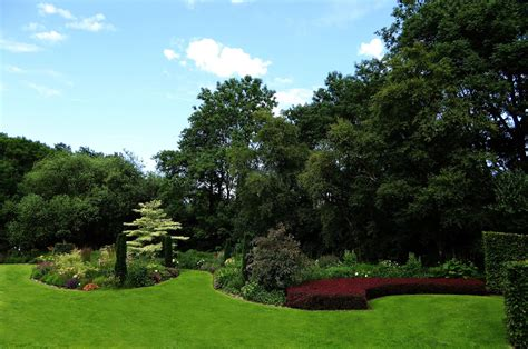 Tree, Grass, Structure, Lawn, Meadow, Flower