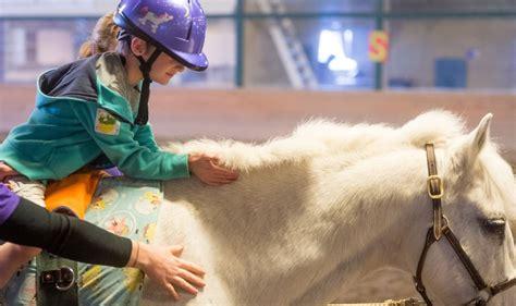 hippotherapy  therapeuticadaptive riding