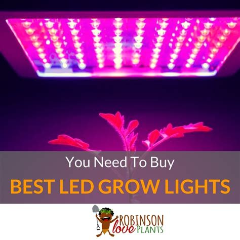 led grow lights review high times best led grow lights high times you need to buy may 2018