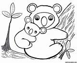 Koala Coloring Bear Pages Printable sketch template