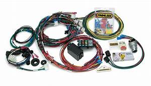 Painless Wiring 20121 22 Circuit Direct Fit Chassis