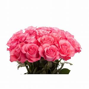 Pink Rose Bouquet - Roses