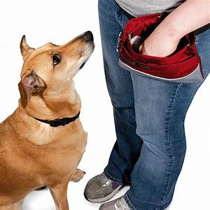 BULK Treat Pouch Sport, Hinged Dog Training Bag - 12 Pack