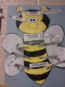 First Grade Insects Bees
