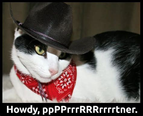 It will be published if it complies with the content rules and our moderators approve it. Cowboy Cat