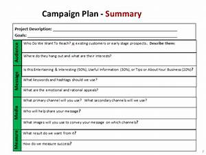 non profit marketing campaign template With online marketing campaign template