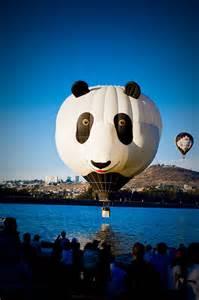Beautiful Photography Hot Air Balloons