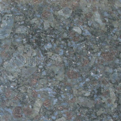 granite g901 butterfly blue from china butterfly blue