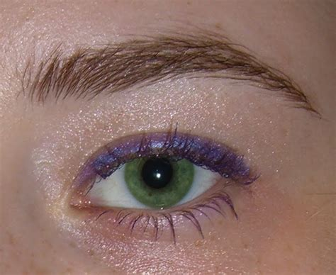 applied color eyeshadow colors     eyes