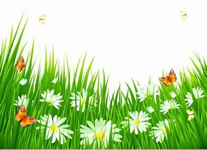 Grass Flower Clipart Flowers Nature Pretty Clip