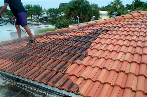all services tile roof cleaning how it is done