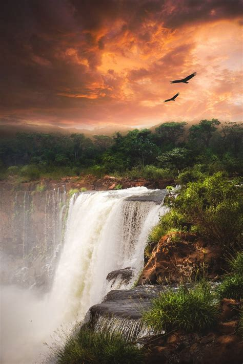Best 25 Iguazu Falls Ideas On Pinterest Iguazu