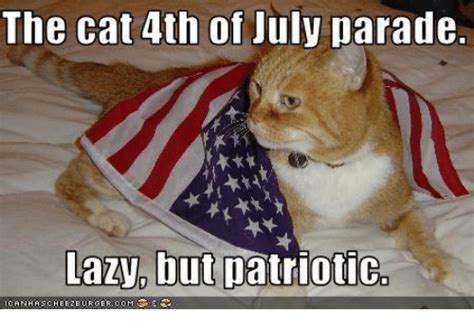 4th Of July Memes - the cat 4th of july parade lazy but patriotic lazy meme on me me