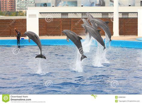 aquarium de valence image 233 ditorial image 22883360