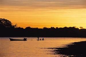 Reserva Nacional De Tambopata  En Madre De Dios