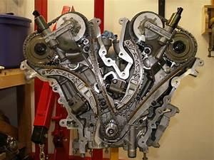Jaguar Xjs Wiring Diagram Jaguar Engine Diagram Wiring