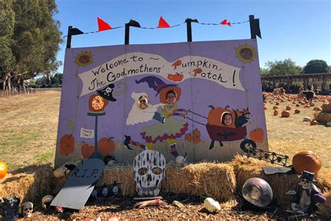 the godmothers of timothy murphy school pumpkin field st 369 | godmothers4 0