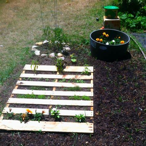 best 25 preschool garden ideas on preschool 952 | 419dab416075f49e44ea2928a95e76ef preschool playground preschool garden