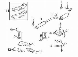 Ford Focus Exhaust System Hanger  Emissions  Liter  Pzev