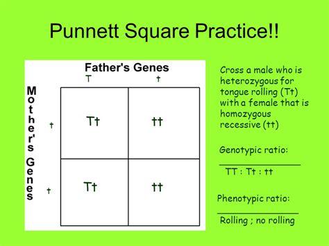 Mendelian Genetics Gregor Mendel Father Of Modern Genetics  Ppt Video Online Download