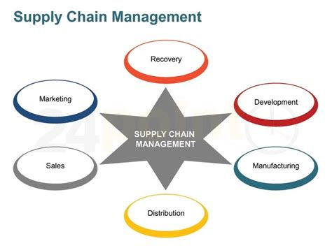 supply chain management  chain  business
