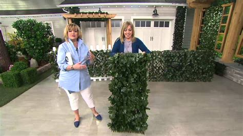 compass home expandable faux ivy privacy fence with lights compass home expandable faux ivy privacy fence on qvc