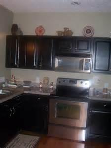 Modern Black Kitchen Cabinets