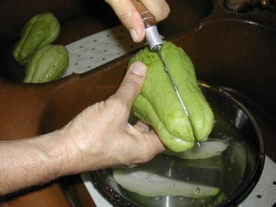 cuisiner la chayotte chayottes gratinées à la réunionnaise recette entrées