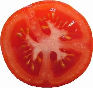 TomatoSlice - Texture - ShareCG