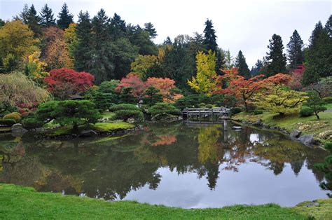 Garden : Seattle Japanese Garden