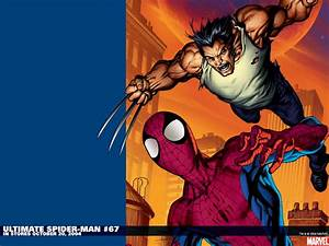 Spider-man Vs. Wolverine wallpapers, Comics, HQ Spider-man ...