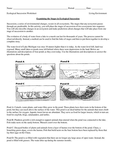 Science Worksheets Ecosystem  Biology Worksheet  Get Now Doc  Education Items Science